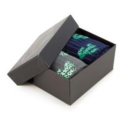 Sada pánských ponožek, šedo-tmavě modrá, 92-SK-007-X1-40/42, Obrázek 1