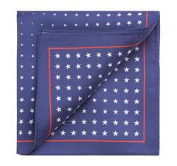 Нагрудный платок, сине-белый, 85-7P-X01-X4, Фотография 1