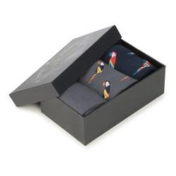 Férfi zokni szett, szürke-sötétkék, 90-SK-001-X2-40/42, Fénykép 1