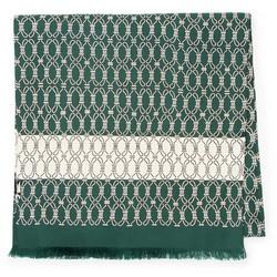 Мужской шелковый шарф, зелено - бежевый, 91-7M-S42-X3, Фотография 1