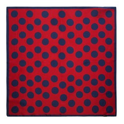 Women's small silk scarf, red-navy blue, 91-7D-S14-X15, Photo 1