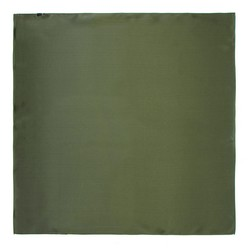 Women's silk scarf, khaki green, 91-7D-S14-ZN, Photo 1