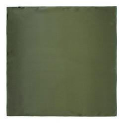 Women's small silk scarf, khaki green, 91-7D-S14-ZN, Photo 1