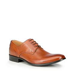 Buty męskie, brązowy, 87-M-603-5-42, Zdjęcie 1