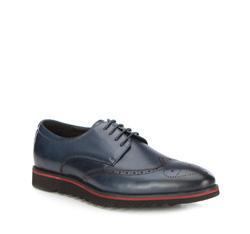 Men's shoes, navy blue, 87-M-924-7-43, Photo 1