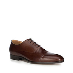Men's shoes, brown, 89-M-700-5-43, Photo 1