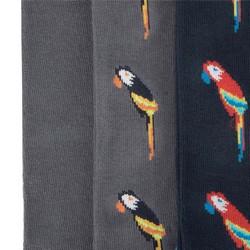 Zestaw męskich skarpetek w papugi, szary, 92-SK-010-X1-40/42, Zdjęcie 1