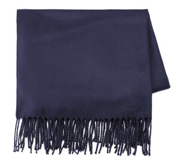 Women's scarf, navy blue, 85-7D-X99-7, Photo 1